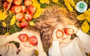 7 idejas kā pavadīt rudens brīvdienas ar ģimeni