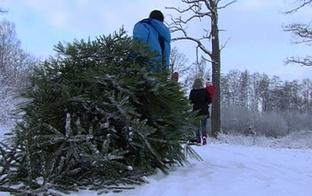 VIDEO: Daudzbērnu ģimenes Ziemassvētki