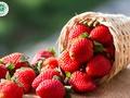 10 vieglas un interesantas receptes, ko pagatavot no zemenēm