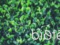 Biotēka piedāvā atlaidi 3+ Ģimenes karšu īpašniekiem