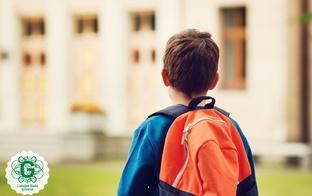 Izglītības un zinātnes ministrija koronavīrusa draudu dēļ apzinās iespējas skolās mācības organizēt attālināti