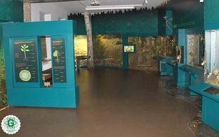 Pieci iemesli kāpēc apmeklēt Dabas muzeju šonedēļ