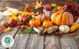 Sēnes, kabači un ķirbji - ieteikumi un receptes rudens ēdienkartei