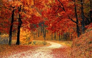 Kurp doties zelta rudeni baudīt