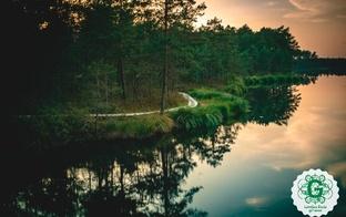 Latvijas Valsts meži atver apmeklētājiem 8 pastaigu takas
