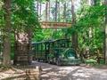 Ģimenēm draudzīgā vieta -  Latvijas valsts mežu dabas parks Tērvetē