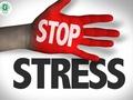 Noskaidroti biežākie vecāku un bērnu stresa cēloņi