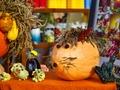 Svinam rudeni: Miķeļdienas tirdziņi, ražas svētki un kino