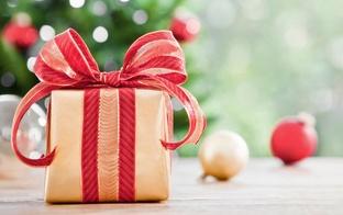 Ozolnieku novada daudzbērnu ģimeņu biedrība aicina pieteikties novada daudzbērnu ģimenes Ziemassvētku paciņai